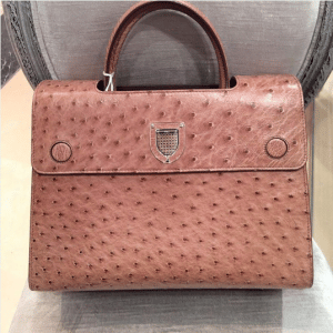 Dior Brown Ostrich Diorever Bag