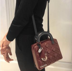 Dior Lily Bag 1