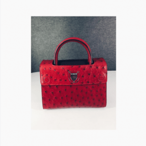 Dior Red Ostrich Mini Diorever Bag