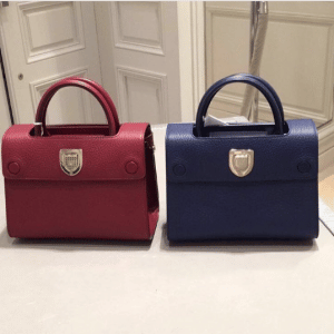 Dior Red and Navy Bullcalf Leather Mini Diorever Bags