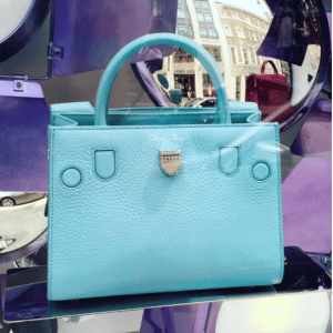 Dior Sky Blue Bullcalf Leather Mini Diorever Bag