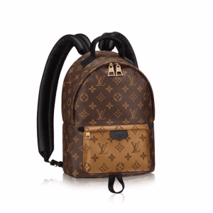 Louis Vuitton Monogram Canvas Palm Springs Backpack PM Bag
