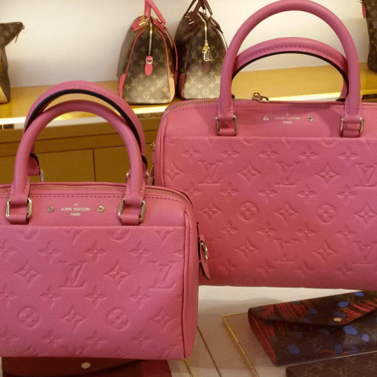Size Guide Of The Louis Vuitton Speedy 20 In Empreinte Leather