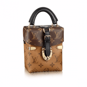 Louis Vuitton Monogram Reverse Canvas Camera Box Bag