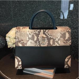 Dior Black/Blue Smooth Prestige Calfskin and Roccia Python Mini Diorever Bag with Corners 2