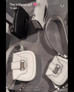 Dior White and Black Saddle and Flap Bags