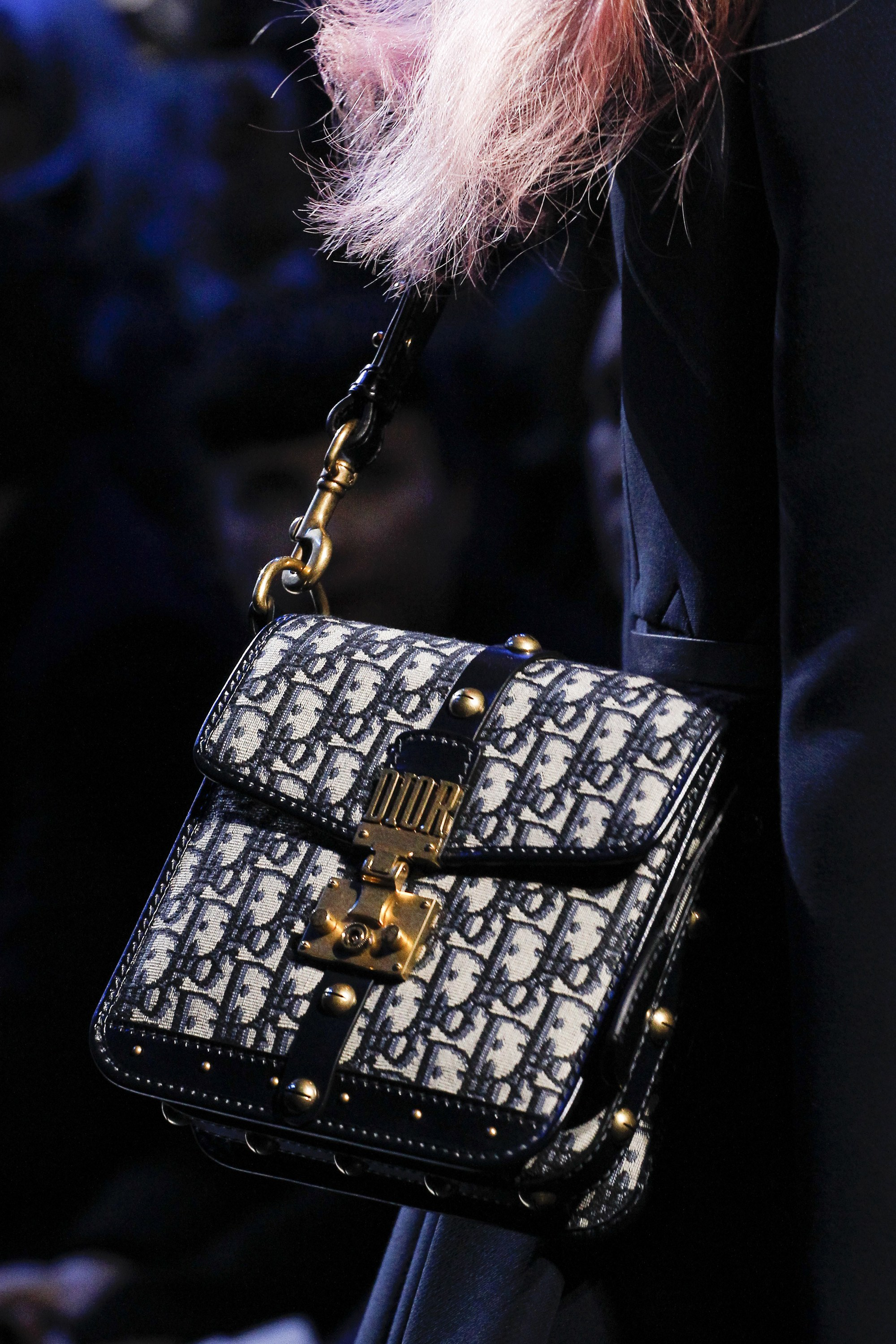 fabd7f4a8 Dior Fall/Winter 2017 Runway Bag Collection | Spotted Fashion