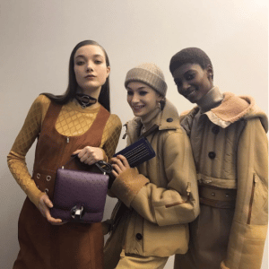 Hermes Violet Ostrich Flap and Embellished Clutch Bags - Fall 2017