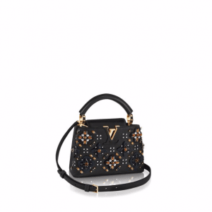 Louis Vuitton Noir Embroidered Dark Muse Capucines Mini Bag