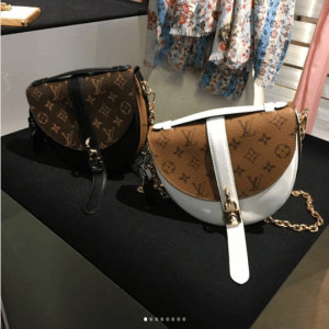 Louis Vuitton Monogram Canvas and Monogram Reverse Saddle Bags