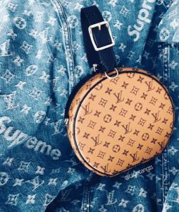 Louis Vuitton Monogram Reverse Petite Boite Chapeau Bag 3