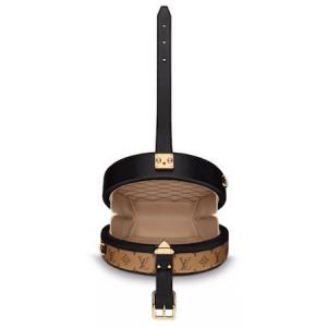 Louis Vuitton Petite Boite Chapeau Bag 3