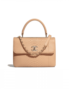 Chanel Beige Python Trendy CC Small Top Handle Bag