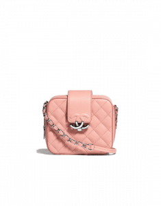 Chanel Pink Urban Companion Camera Case Bag