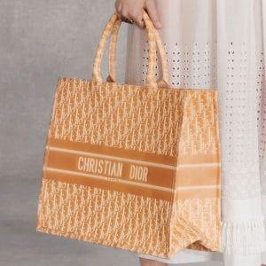 Dior Beige Logo Printed Tote Bag - Pre-Fall 2018
