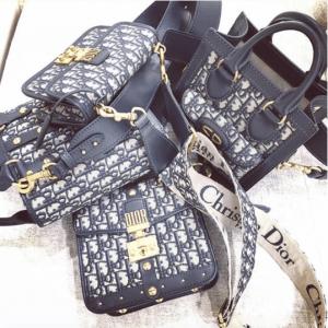 Dior Blue Oblique Canvas Bags