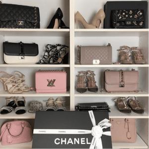 Bag Closet Organization 11