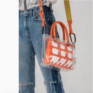 Designer Transparent Bag 10