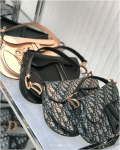 Dior Saddle Bags - Cruise 2019