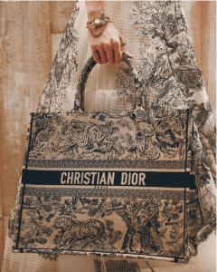 Dior White/Blue Embroidered Book Tote Bag - Cruise 2019