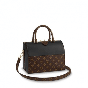 Louis Vuitton Monogram Canvas:Calf Leather Speedy Doctor Bag
