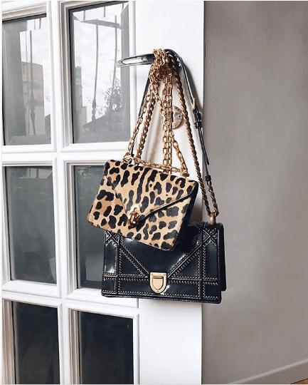 Dior C'est Dior Bag