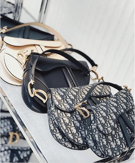 Dior Saddle Bags