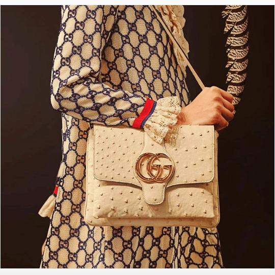 Gucci Cruise 2019 Runway Bag Collection