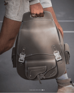 Dior Gray Backpack Bag - Spring 2019