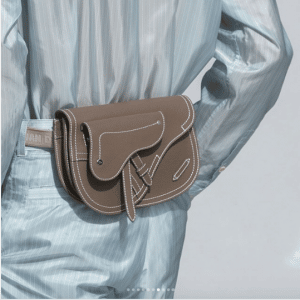 Dior Taupe Saddle Belt Bag - Spring 2019