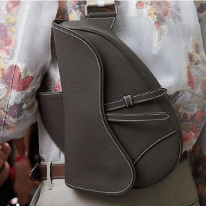Dior Gray Saddle Bag - Spring 2019