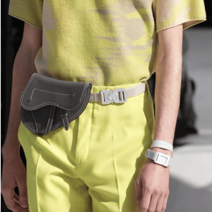 Dior Gray Saddle Belt Bag - Spring 2019