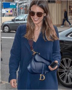 Dior Blue Calfskin Saddle Bag
