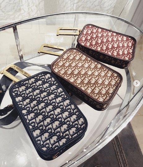 928d2e35b255b Dior Diorquake Clutch Bag 7. IG  blackboxconcierge