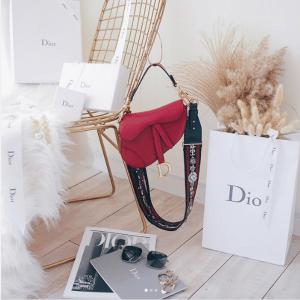 Dior Red Calfskin Saddle Bag 2