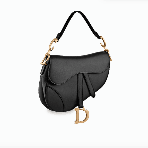Dior Saddle Bag 1