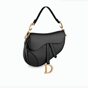 Dior Saddle Bag 1