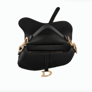 Dior Saddle Bag 2