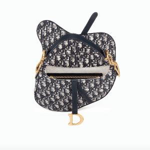 Dior Saddle Bag 3