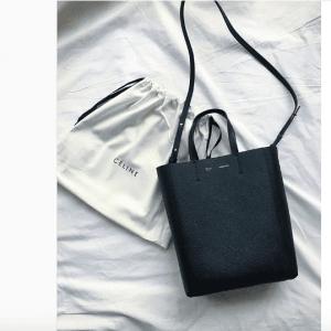 Celine Cabas Bag 1