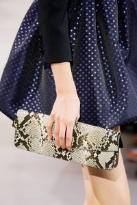 Celine Natural Python Clutch Bag - Spring 2019