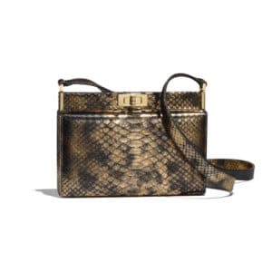 Chanel Bronze:Black Python Reissue Clutch Bag