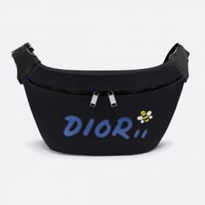 Dior Black/Blue Nylon Dior x Kaws Belt Bag