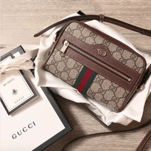 Gucci Ophidia Bag 2
