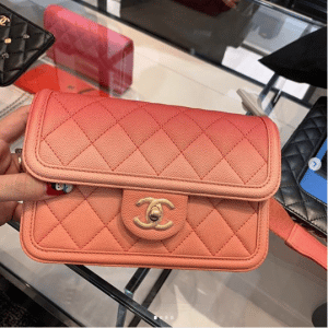 Chanel Coral Sunset On The Sea Waist Bag