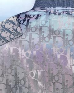 Dior Men's Pre-Fall 2019 18