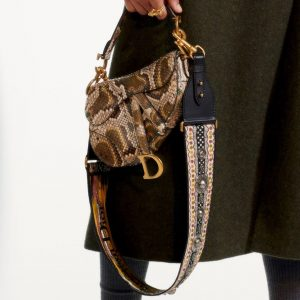 Dior Natural Python Saddle Bag - Pre-Fall 2019
