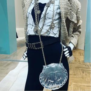 Chanel Transparent Seashell Minaudiere Bag