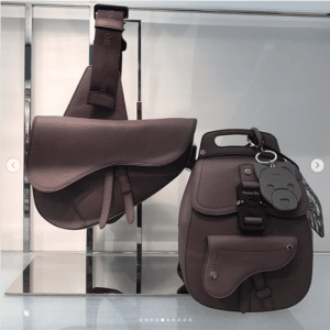 Dior Brown Saddle Crossbody and Mini Backpack Bags
