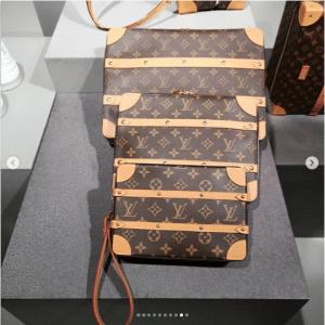Louis Vuitton Monogram Canvas Pouch Bags